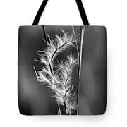 Dune Grass - Paint Bw Tote Bag