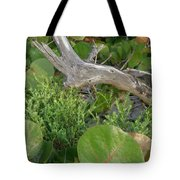 Dune Plants Tote Bag