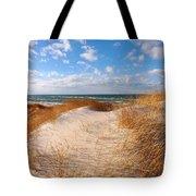 Dunes In Winter Tote Bag