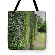 Dungeness Ivy Wall Tote Bag