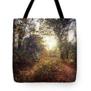 Dunmore Wood - Autumnal Morning Tote Bag