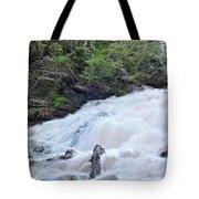Dunnings Falls Tote Bag