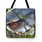 Dunnock On A Snowy Day In Winter Tote Bag