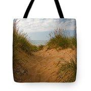 Nova Scotia's Cabot Trail Dunvegan Beach Dunes Tote Bag