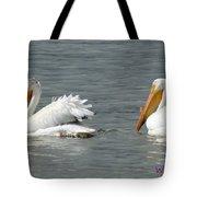 Duo Pelicans Tote Bag
