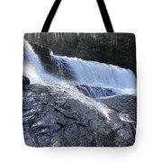 Dupont Forest Hooker Falls Tote Bag