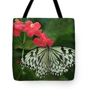 Durham Butterfly #5 Tote Bag