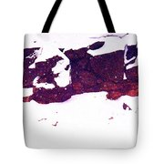 During The Snow Fall Pd 3 Tote Bag
