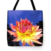 Dusk And A Dahlia Tote Bag