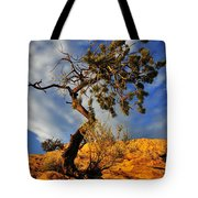 Dusk Dance Tote Bag by Skip Hunt