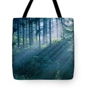 Dusk In Ashenvale II Tote Bag