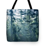 Dusk In Ashenvale IIi Tote Bag