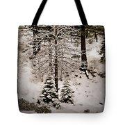 Dusk In The Sierras Tote Bag