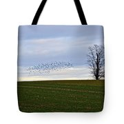Dusk Tree And Birds Tote Bag