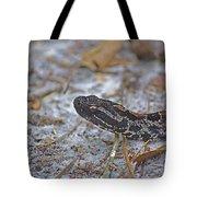 Dusky Pygmy Rattlesnake Tote Bag