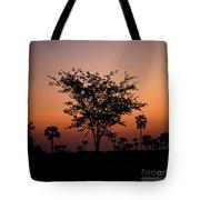 Dusky Tree Tote Bag