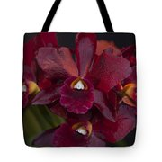 Dusty Red Orchid Tote Bag