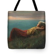 Dutch  Dreams  Tote Bag
