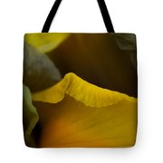 Dutch Iris Bronze Beauty 2 Tote Bag