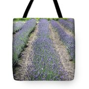Dutch Lavender Field Tote Bag