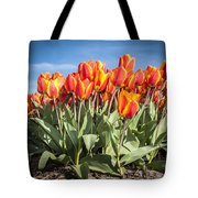 Dutch Tulips Second Shoot Of 2015 Part 3 Tote Bag