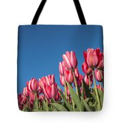 Dutch Tulips Second Shoot Of 2015 Part 8 Tote Bag