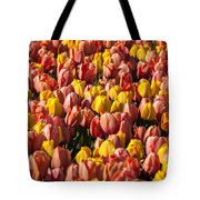 Dutch Tulips Second Shoot Of 2015 Part 9 Tote Bag