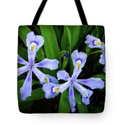 Dwarf Crested Iris Tote Bag