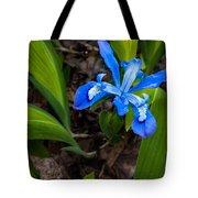 Dwarf Iris Tote Bag
