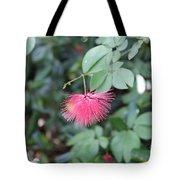 Dwarf Powder Puff Flower Tote Bag