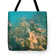 Dying Coral Tote Bag