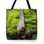 Dying Tree In The Forest Tote Bag