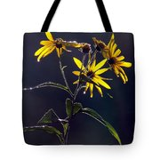 Each New Day Tote Bag
