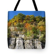 Eager For Autumn Colors Tote Bag