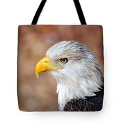 Eagle 10 Tote Bag