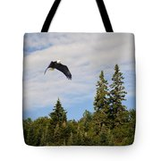 Eagle At Scott Brook Tote Bag