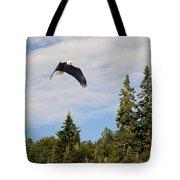 Eagle At Scott Brook II Tote Bag