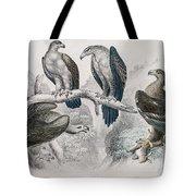 Eagle Birds Print Tote Bag