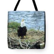 Eagle Calls In Its Mate Tote Bag
