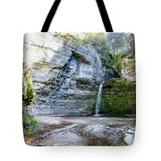 Eagle Cliff Falls Panorama Tote Bag by William Norton