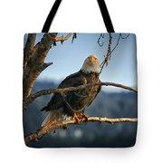 Eagle Eyed Tote Bag