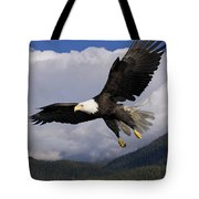Eagle Flying In Sunlight Tote Bag
