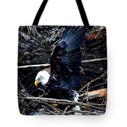 Eagle Getting Ready To Feed Tote Bag