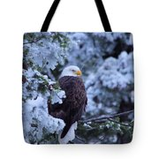Eagle In A Frosted Tree Tote Bag