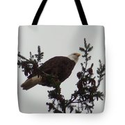 Eagle In A Tree Tote Bag