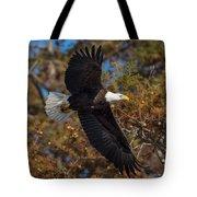 Eagle In Fall Tote Bag