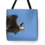 Eagle In Flight Tote Bag