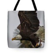 Eagle In Flight With Fish Tote Bag