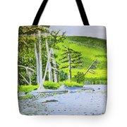 Eagle Lake, Acadia, Maine Tote Bag