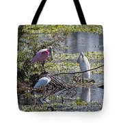 Eagle Lakes Park - Roseate Spoonbill And Friends, Socializing Tote Bag